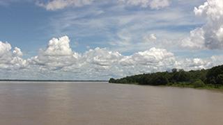 ブラジル/アマゾン川流域
