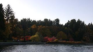 カナダ/バンクーバー/スタンレーパーク