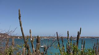 エクアドル/ガラパゴス諸島/サン・クリストバル島