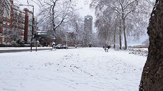 イギリス/ロンドン/ハイド・パーク
