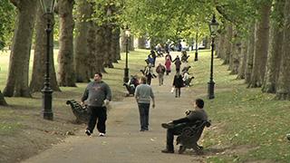 イギリス/ロンドン/グリーン・パーク