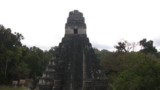 グアテマラ/ティカル国立公園