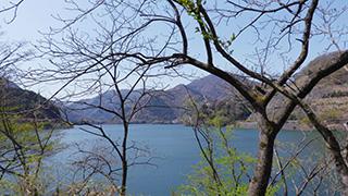 日本/神奈川/丹沢湖