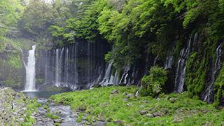 日本/静岡/白糸の滝