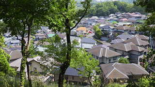 森から見える住宅地
