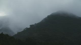 早朝の山の霧