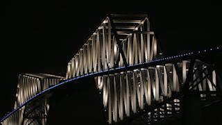 日本/東京/東京ゲートブリッジ