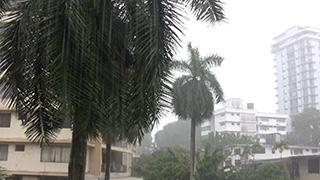 パナマ/パナマシティ/スコール
