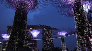 シンガポール/ガーデンズ・バイ・ザ・ベイ