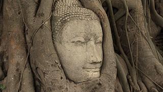 タイ/アユタヤ/ワット・マハタート