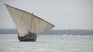 タンザニア/ザンジバル島/ストーン・タウン