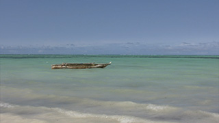 タンザニア/ザンジバル島/パジェ