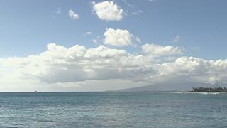 アメリカ/ハワイ/オアフ島/アラモアナ